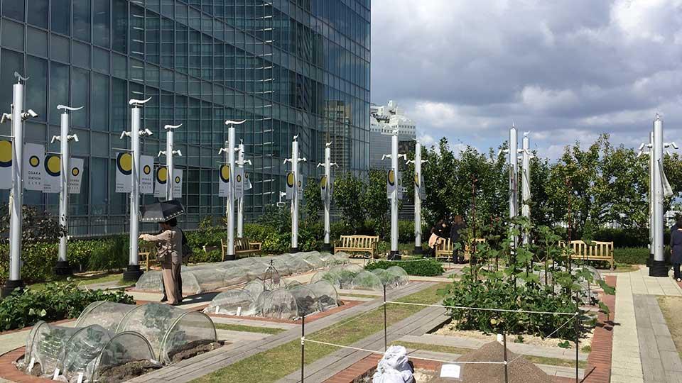 大阪ステーションシティ天空の農園