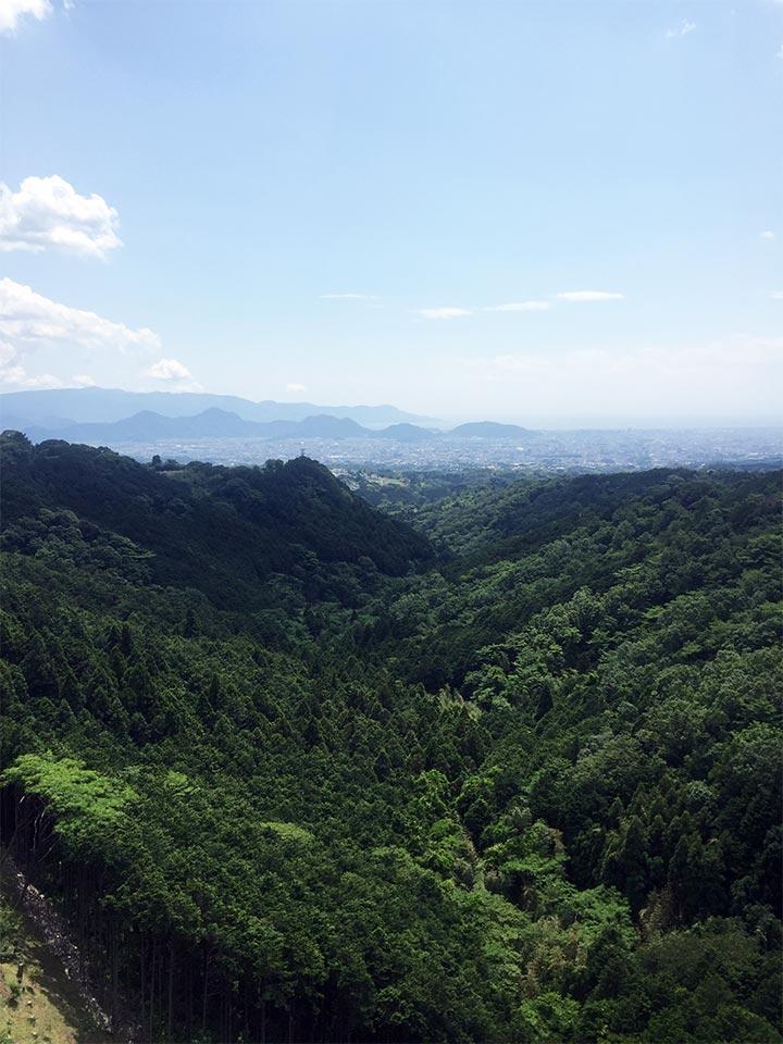 三島大吊橋からの風景