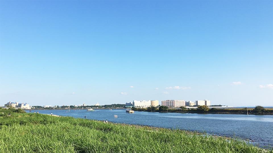 東京水辺ライン葛西から千葉方面の景色