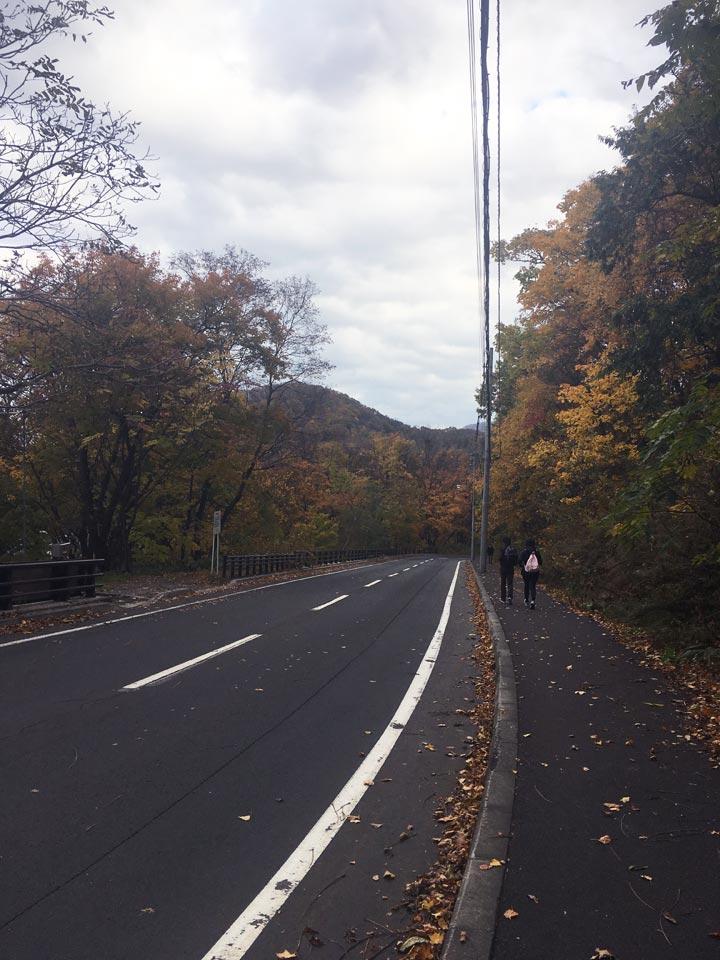 大倉山展望台からバス停までの景色