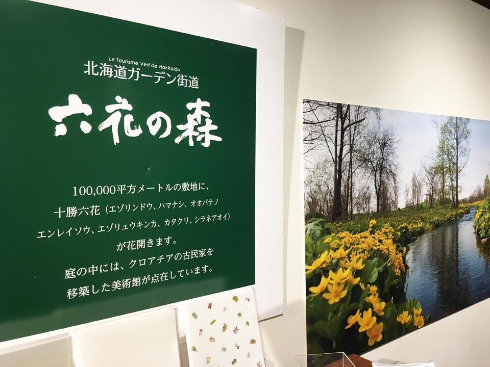 六花の森北海道ガーデン街道小樽六花亭2Fカフェ
