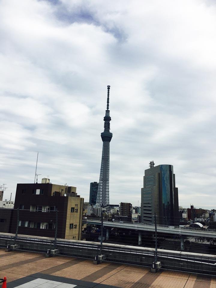 エキミセ浅草ハレテラス_最上階撮影スポットから撮った東京スカイツリーと墨田区役所