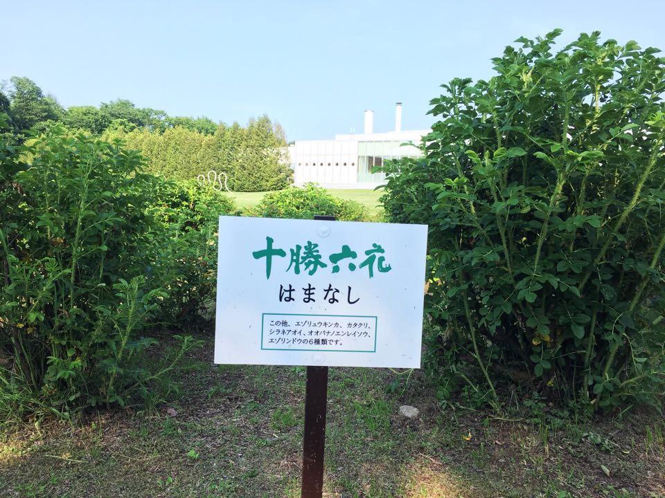 六花の森_ハマナシ